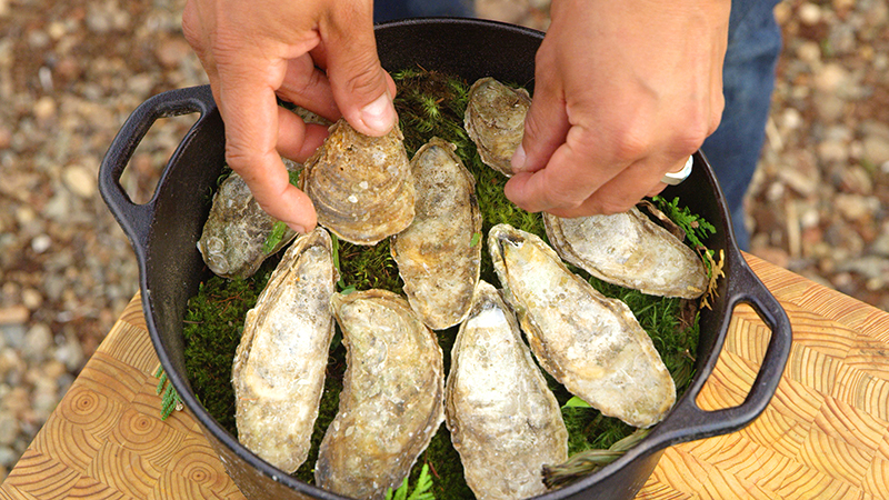 Food - Oysters