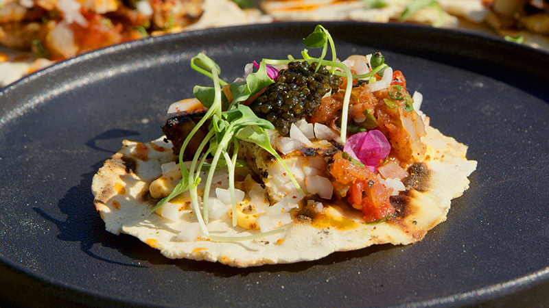Food - Sturgeon Taco